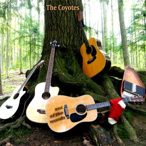 3 guitars, bass, autoharp and red sock leaning on tree trunk in the woods. Caption on guitar: Out Of The Woods